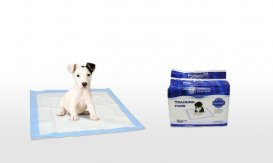 100-Pack of American Kennel Club Puppy-Training Pads   Groupon