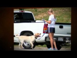The Dog Training Secret Reviews From Youtube - Download mp3 Music
